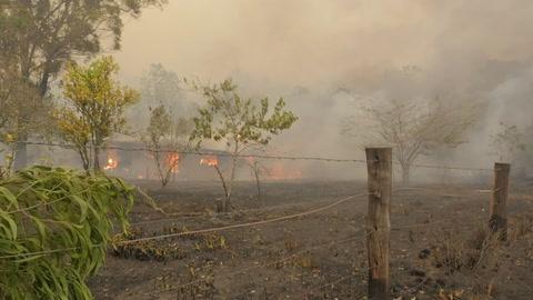 Tres bomberos estadounidenses mueren al estrellarse su avión en Australia