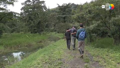 Corredores biológicos en Costa Rica: una estrategia para la conservación