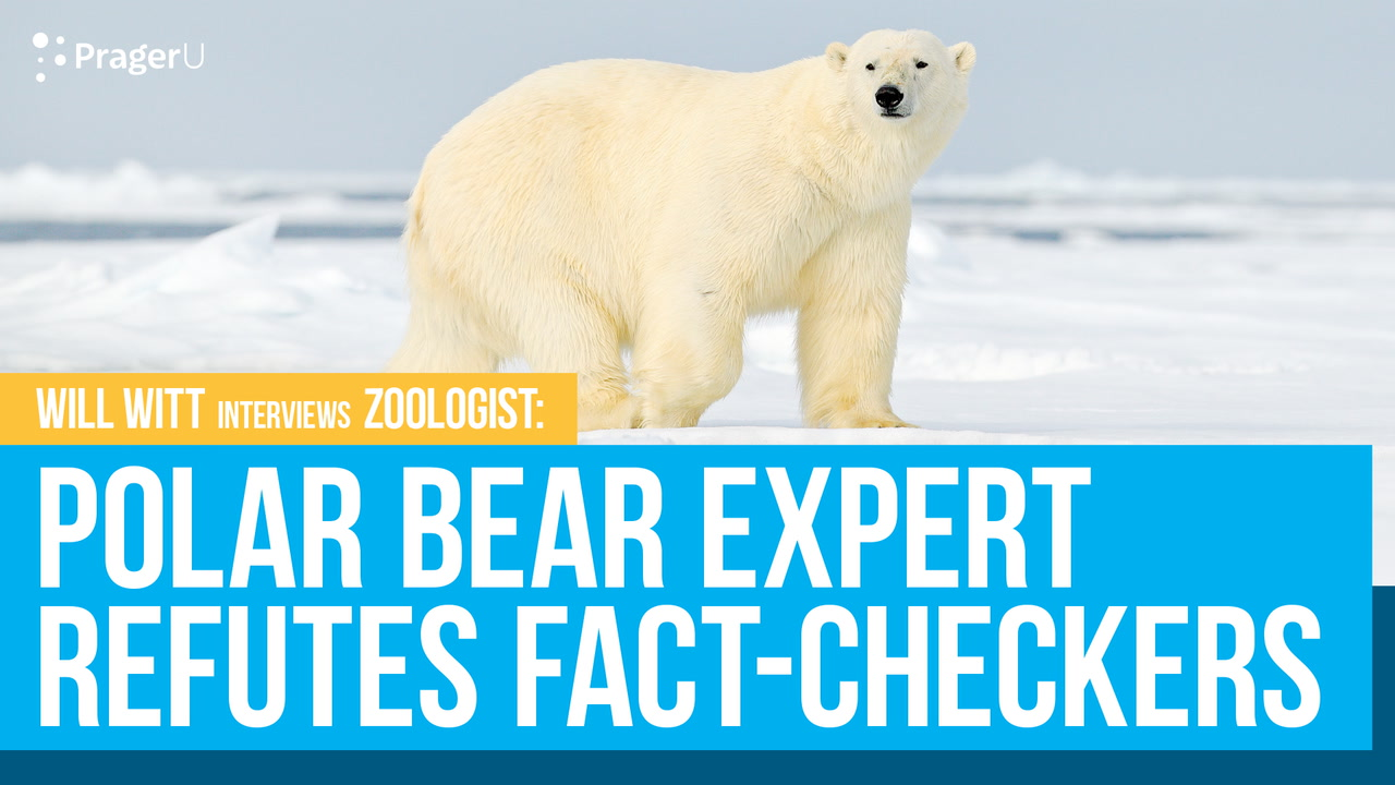 Polar Bear Expert Refutes Fact-Checkers