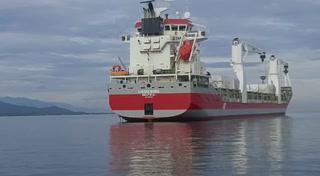 Llegada del buque con hospitales móviles a Puerto Cortés