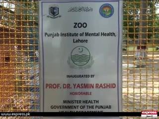 پاکستان میں پہلی بارلاہورکے مینٹل اسپتال میں برڈ ایوری بنانے کا کام شروع