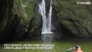 Pico Bonito, un refugio de aguas cristalinas y mucha vegetación