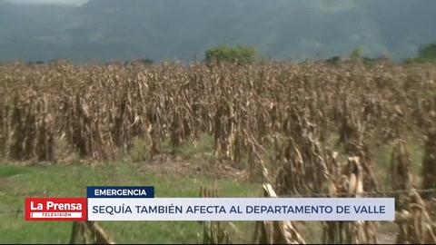 Sequía también afecta al departamento de Valle