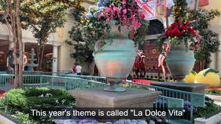 Bellagio Conservatory unveils Italian summer exhibit