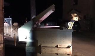Deputies Rescue Bear Cub From Dumpster – Video