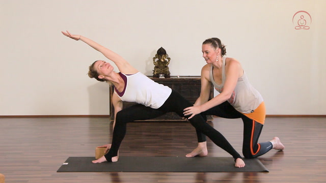 Sattva - Bring Dich in Balance