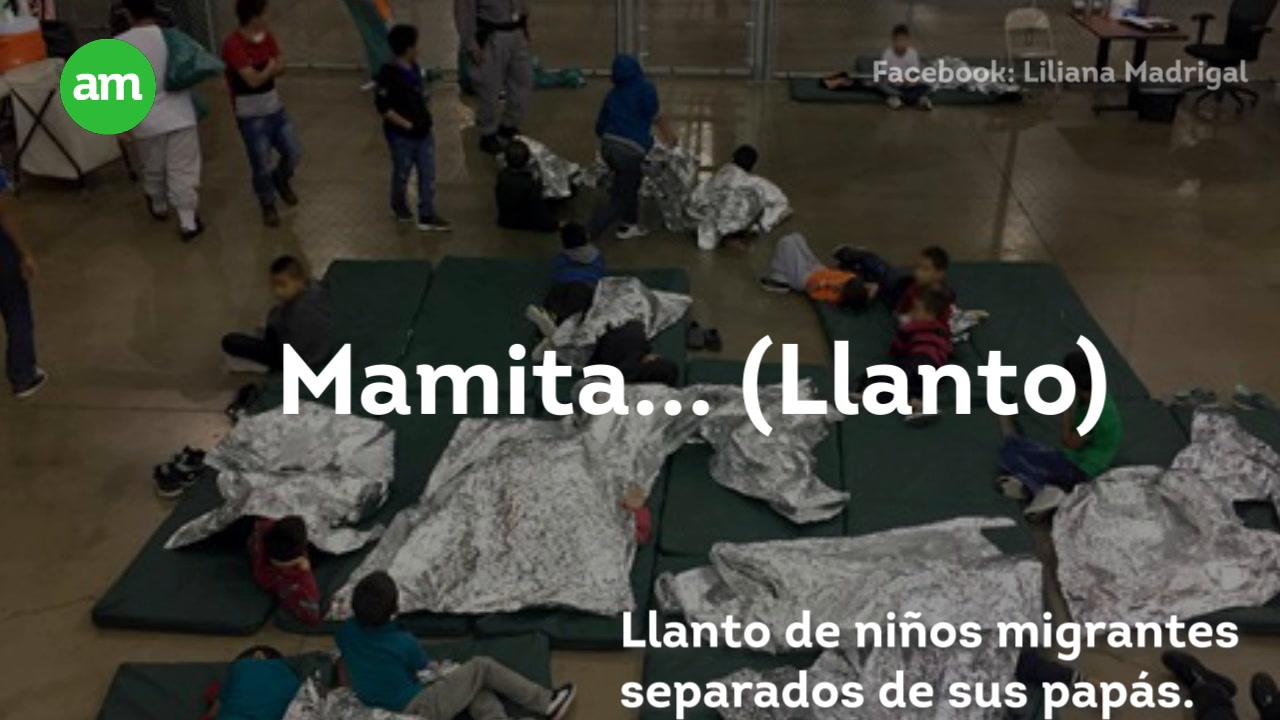 Video: Envían a niños migrantes a 'la perrera'