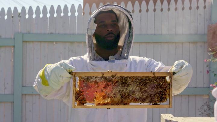 King Keraun Becomes A Professional Bee Keeper