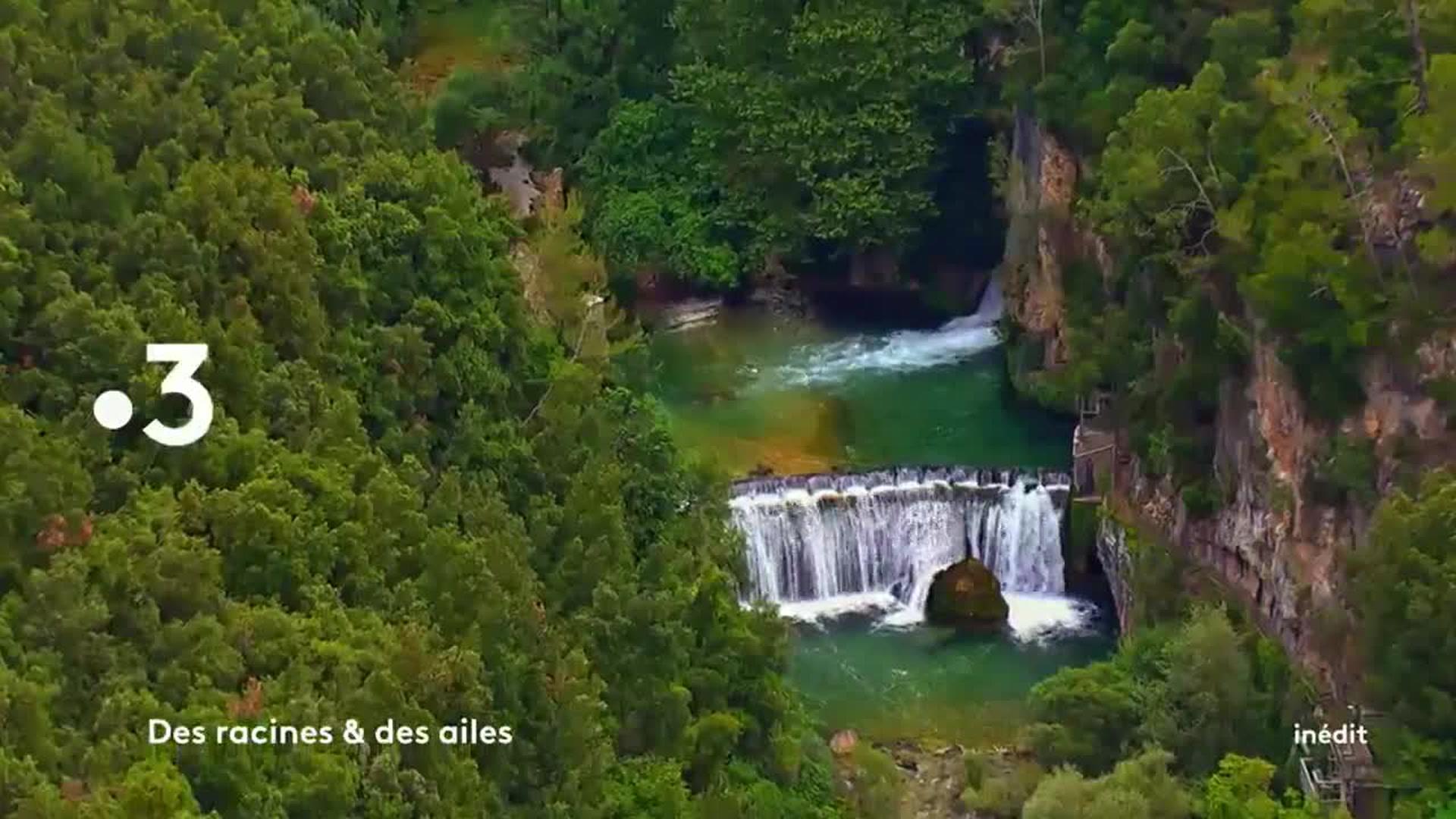 Des racines et des ailes : Les trésors de la route Napoléon