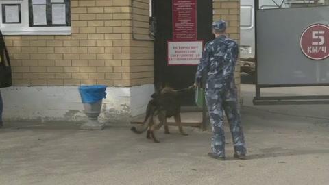 Prohíben entrada a centro penitenciario a los médicos del opositor ruso Navalni
