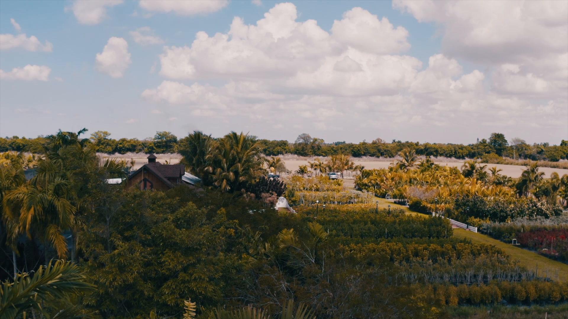 David + Michelle | Miami, Florida | Redland Farm Life