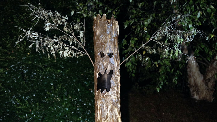 They're Alive! Learn How to Make These Spooky Trees for Your Yard