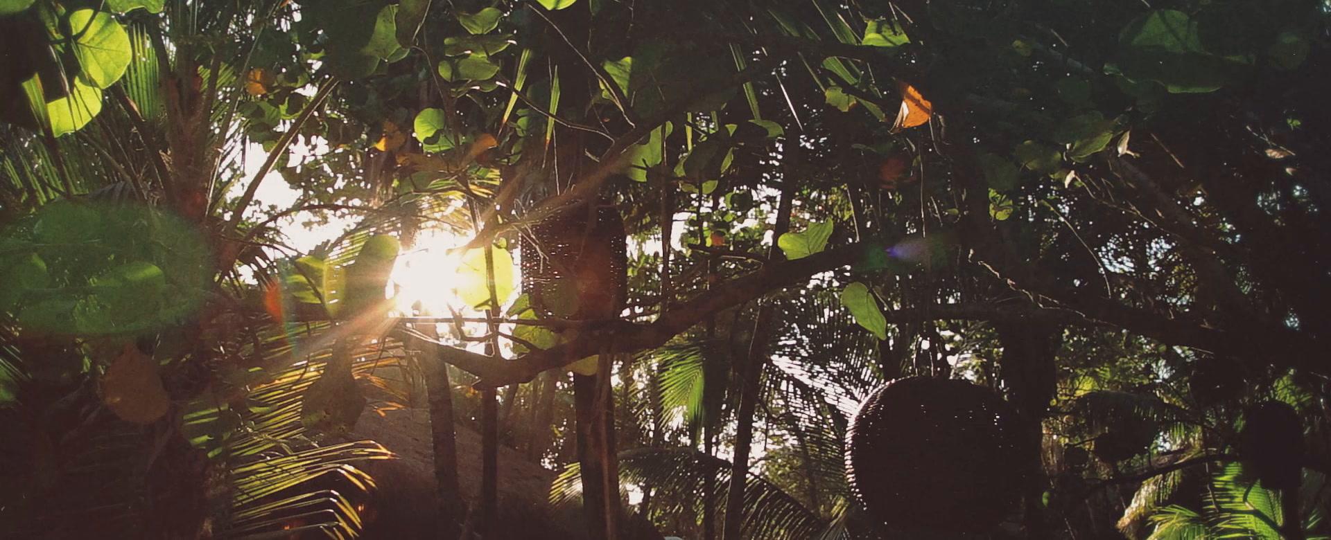 Arien + Diego | Tulum, Mexico | Akiin Beach Club