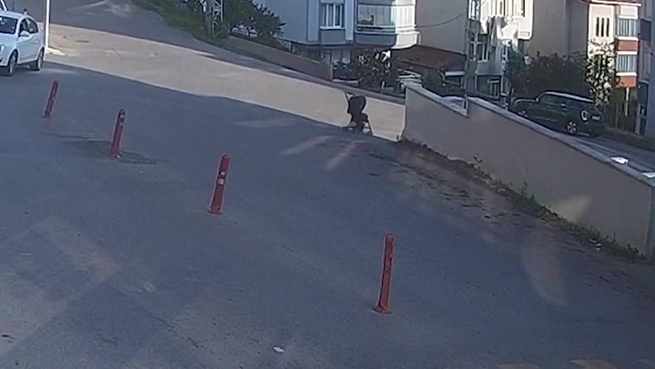 Mum chases after pram carrying baby as it rolls down steep hill