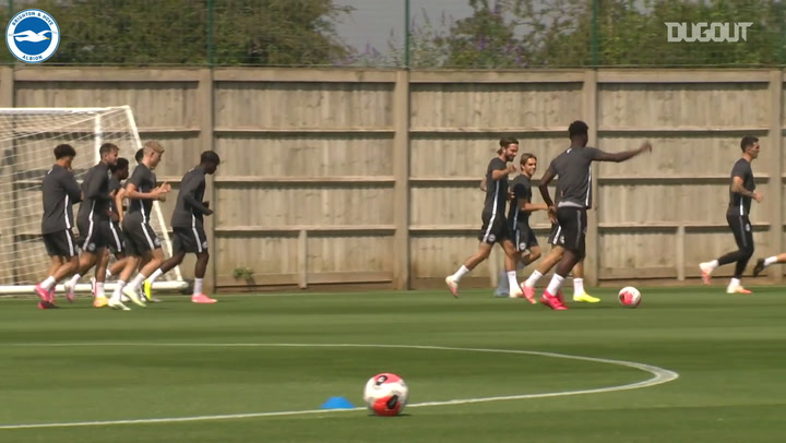 Brighton se prepara para duelo contra o Manchester United