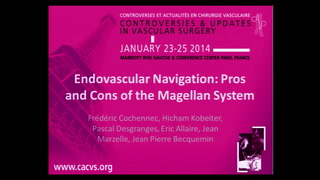 Endovascular navigation: pros and cons of the Magellan system
