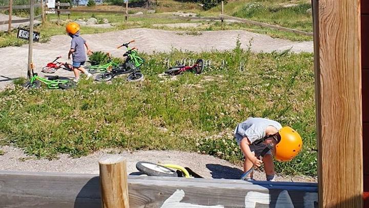 Carlos Felipe y Sofia de Suecia, de excursión en bici con sus hijos