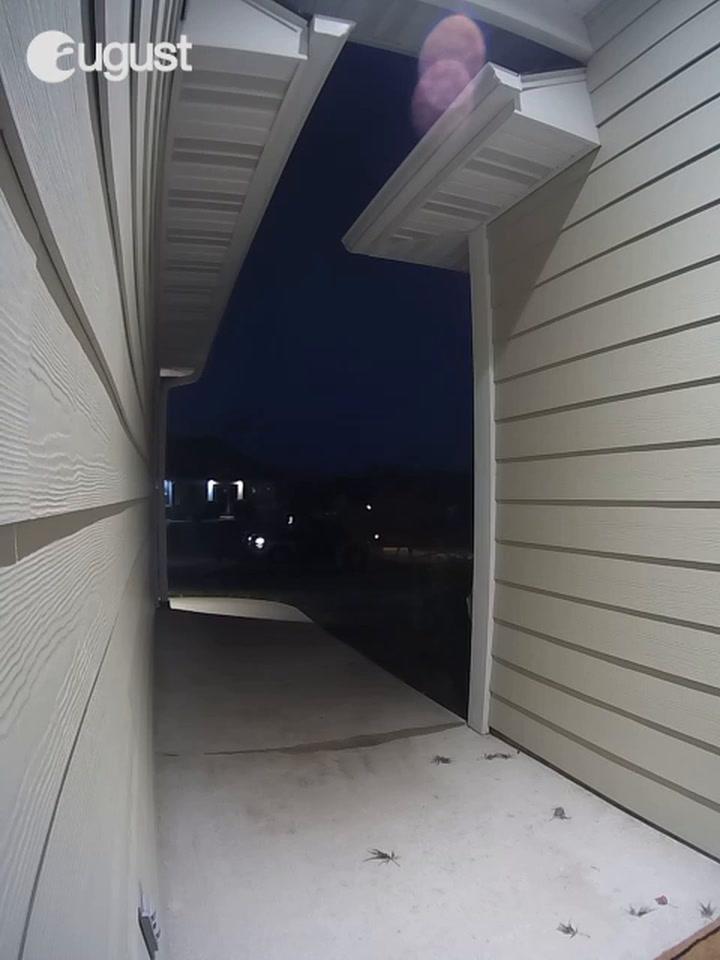 RAW VIDEO: Package taken from Columbia's Bellwood neighborhood