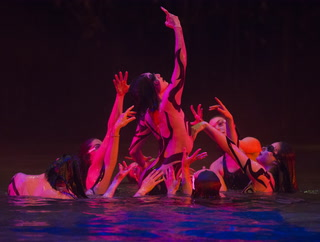 Cirque du Soleil files for bankruptcy