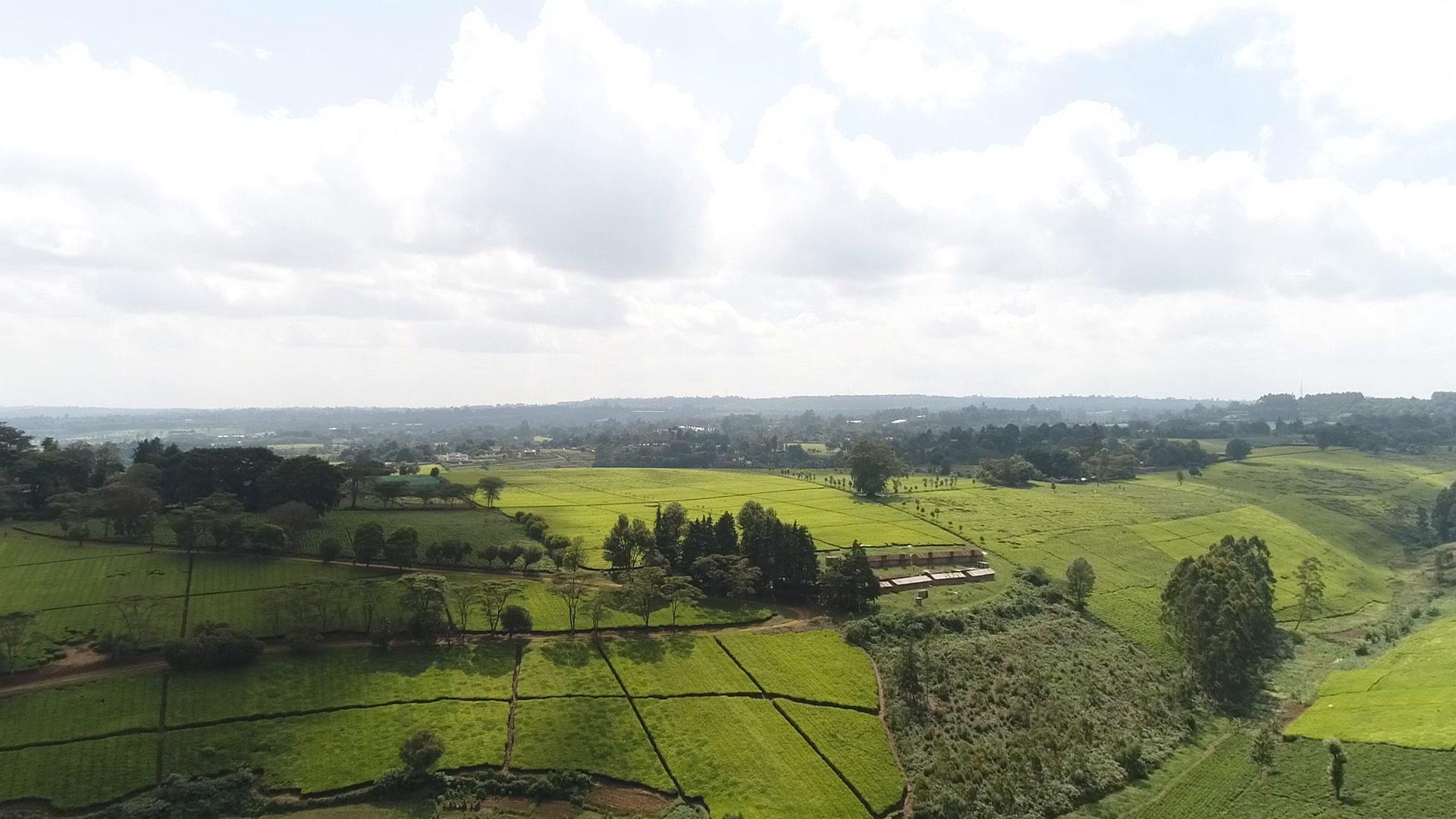 Shali + Karuga | Limuru Town., Kenya | Fuschia Gardens, Eldo Farm