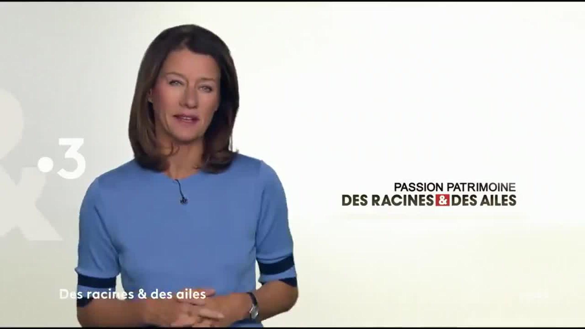 Des racines et des ailes : Passion patrimoine : Du Poitou aux îles des Charentes
