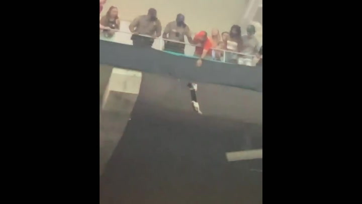 Crowd break cat's terrifying fall from stadium upper deck with American flag