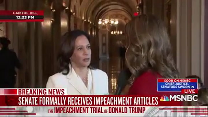 Kamala Harris: Parnas Should Testify in Senate Impeachment Trial