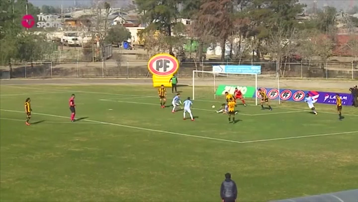 Chilean player celebrates goal by jumping in bin beside pitch