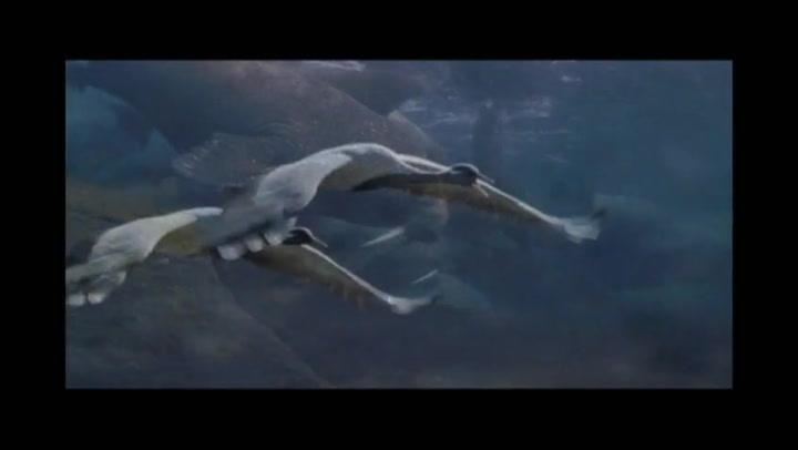 Earth - Trailer No. 1