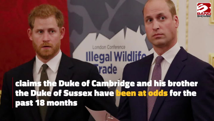 Prince William and Prince Harry's feud, by the journalist who knows them both well