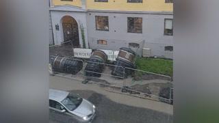Her popper søppeltønnene opp