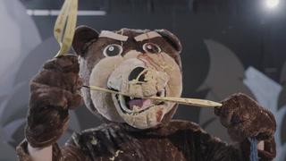 """#SnugZillionUses - """"Bearfloss"""""""