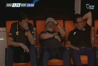 Curiosa reacción de Maradona en el banquillo de Dorados