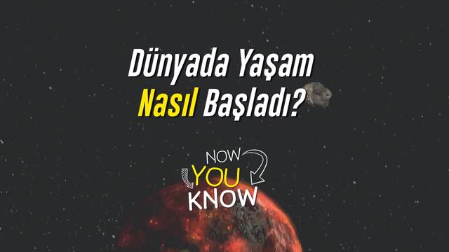 Now You Know - Dünya'da yaşam nasıl başladı?