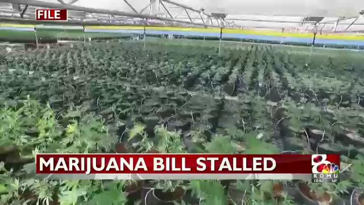tkelley_marijuana