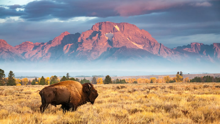 """Governor Mark Gordon: Wyoming Wants to Welcome Bitcoin """"Pioneers"""""""