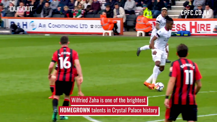 Wilfried Zaha: Crystal Palace's main man