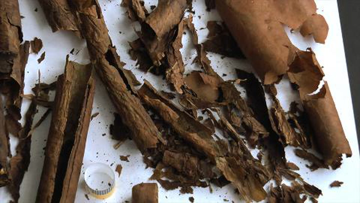 Counterfeit Cuban Cigars Part II: Cutting Open Counterfeits