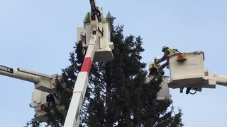 Linemen from Itasca-Mantrap Electric Co-op and Minnesota Power partnered to string the tree with lights and festive decorations.
