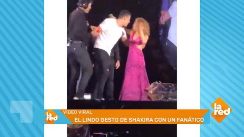 El humilde gesto de Shakira en el escenario después de que un fan saltara al escenario