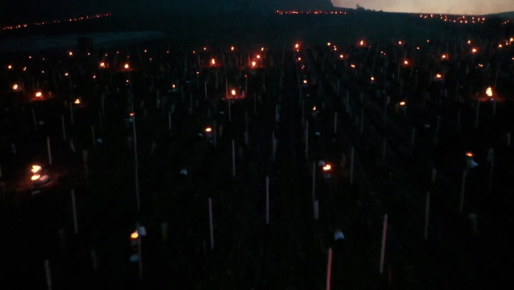In a battle with frost, winemakers turn to candles