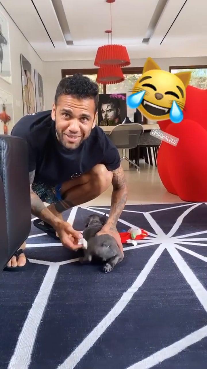 Alves es de los que pasea al perro