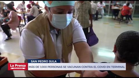 Más de 1,000 personas se vacunan contra el covid en terminal sampedrana