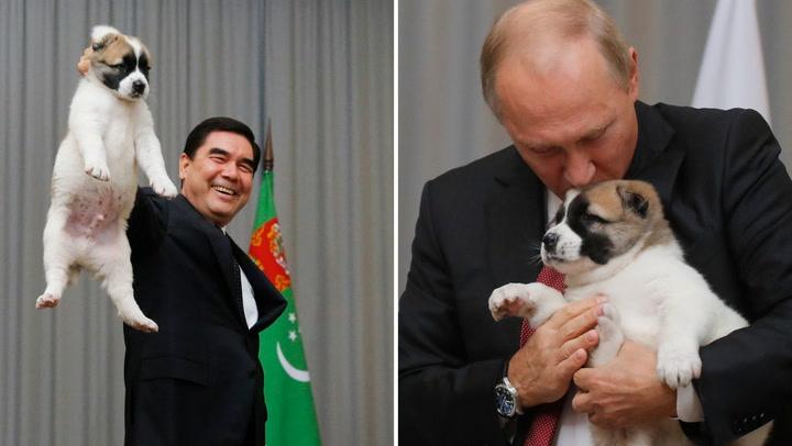 Mira la reacción de Vladimir Putín al ver el maltrato animal