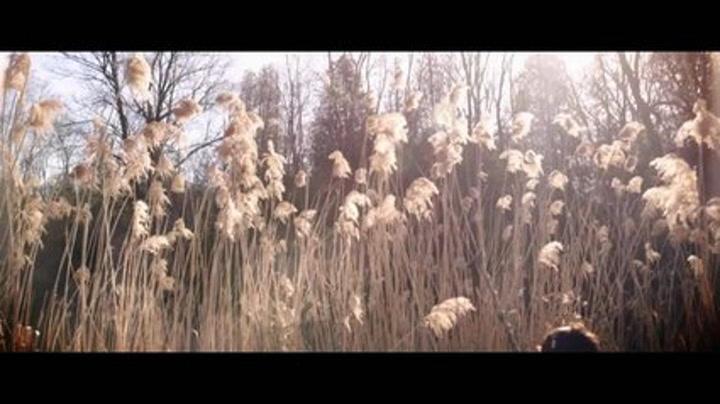 Much Music Video Awards 2011 Trailer