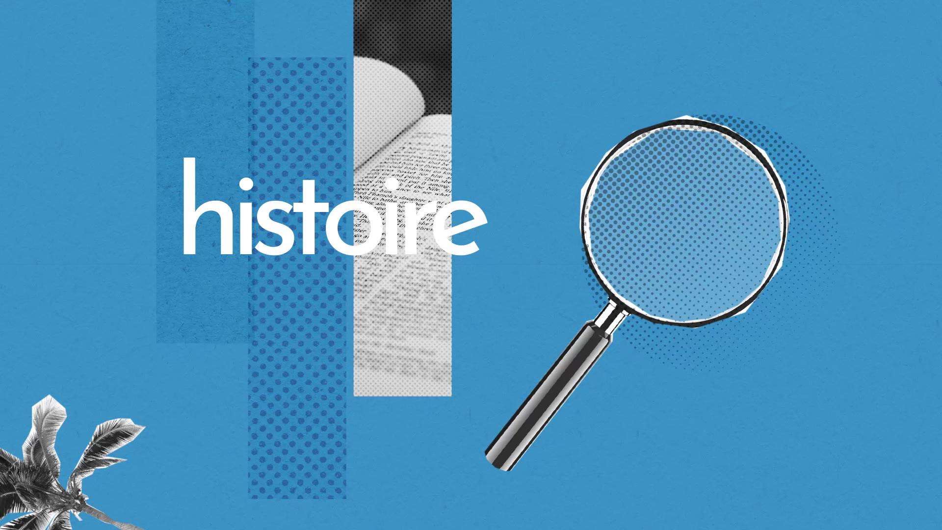 Histoire Définition Simple Et Facile Du Dictionnaire