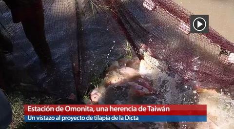 Estación De Omonita, Una Herencia De Taiwán
