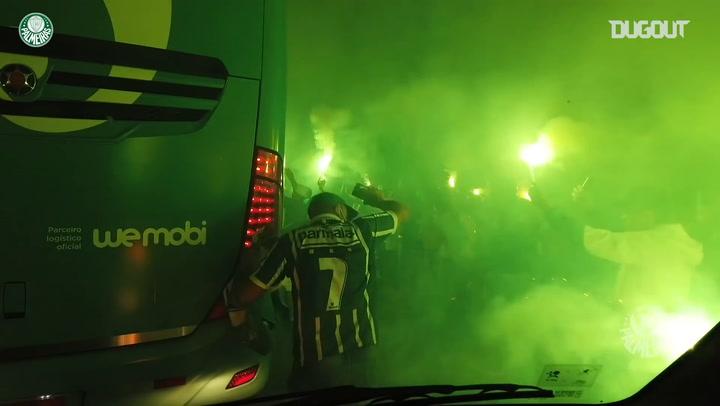 Bastidores da classificação do Palmeiras à final da Libertadores