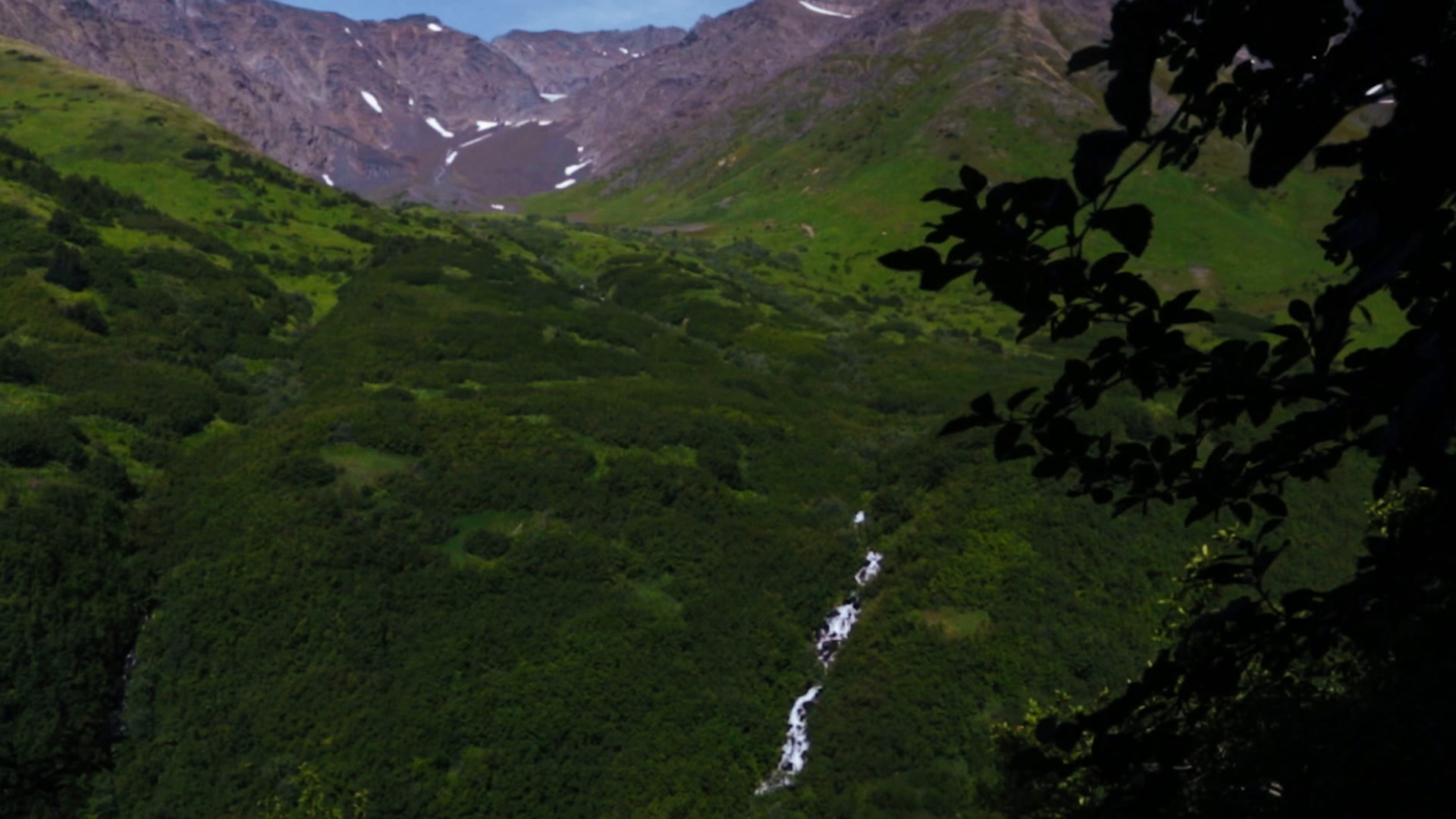 Amanda + Kyle | Anchorage, Alaska | Jack Sprat
