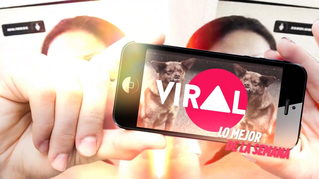 VIDEO: Curiosidades virales